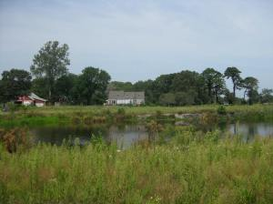 Our Farm on Cape Cod