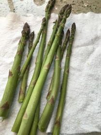 Last night's dinner of fresh-picked asparagus